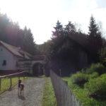 Freilichtmuseum in Stübing