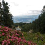 Siebenhüttenweg