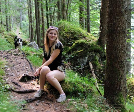 Waldsteig am Salza Stausee