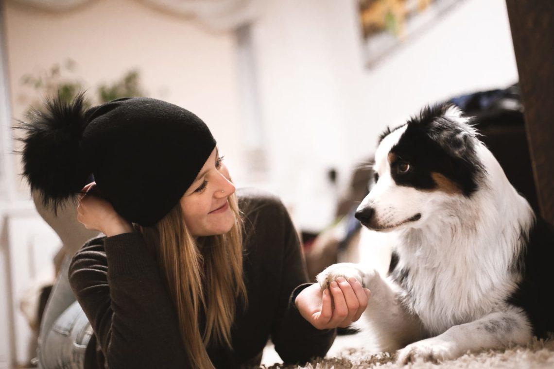 Aufmerksamkeitsübungen Hund
