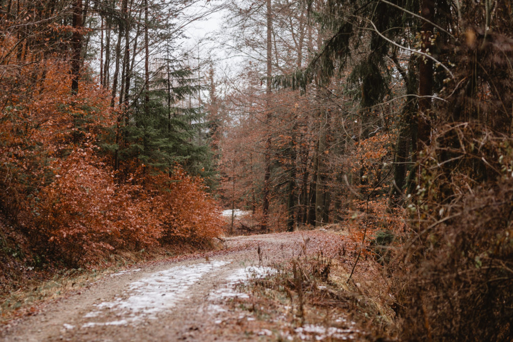 Königgraben Runde