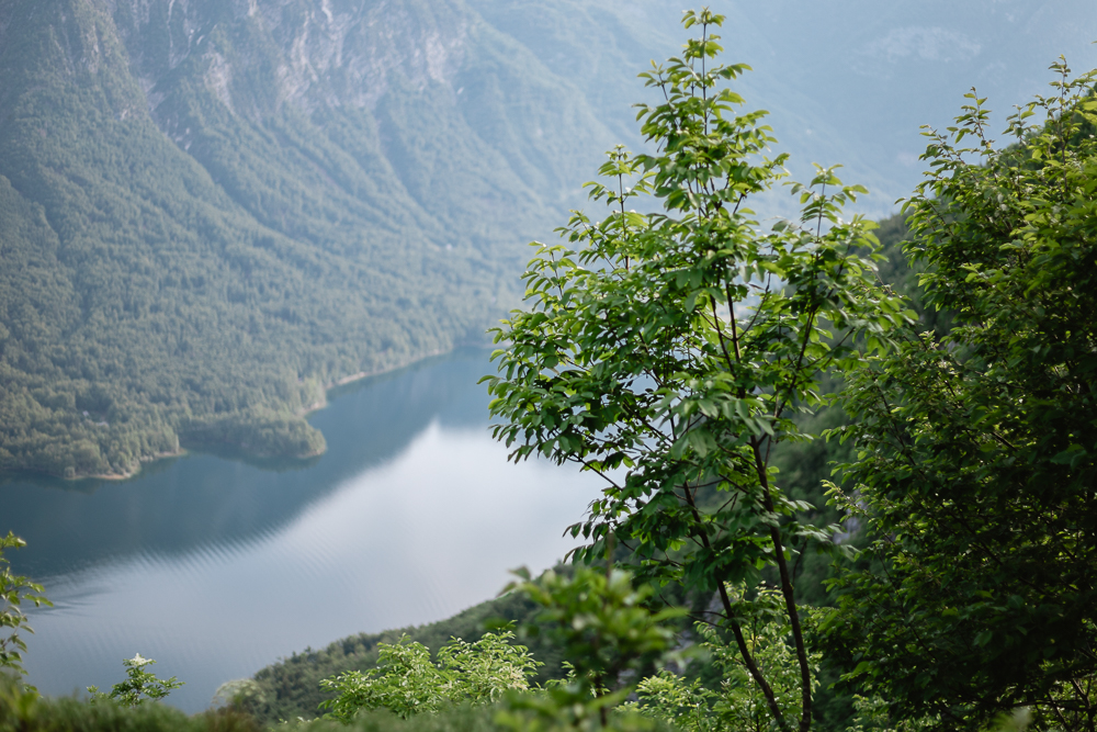Aussichtspunkt Bohinjer See